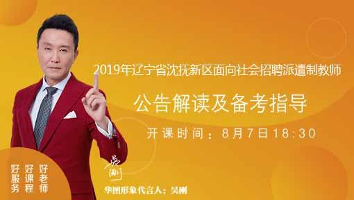 2019年辽宁省沈抚新区面向社会招聘派遣制教师28人公告解读与备考指导