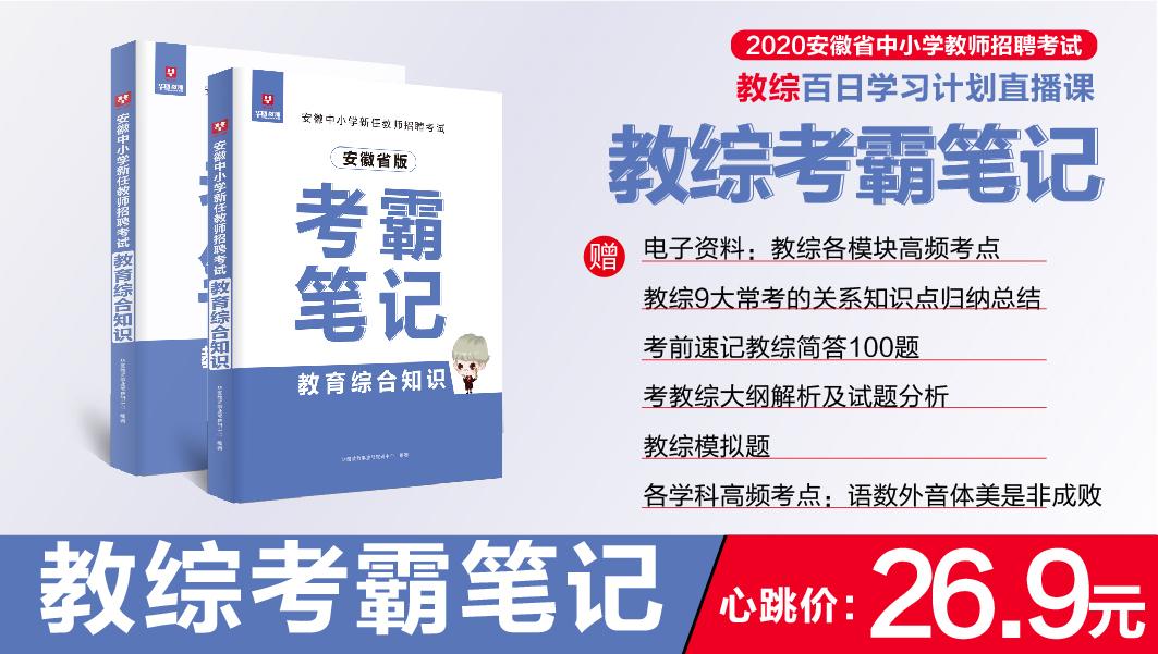 【现货 合肥发货】2020安徽中小学教师考编考试 教综考霸笔记